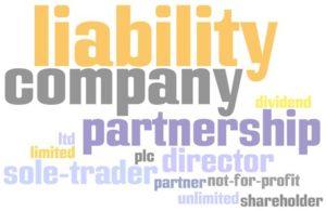 Business Structure Eustan Ventures